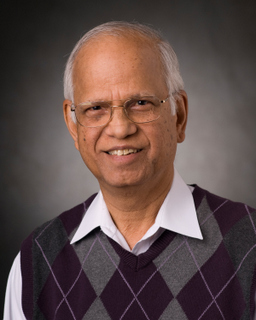 Photo of A. Ravi Ravindran